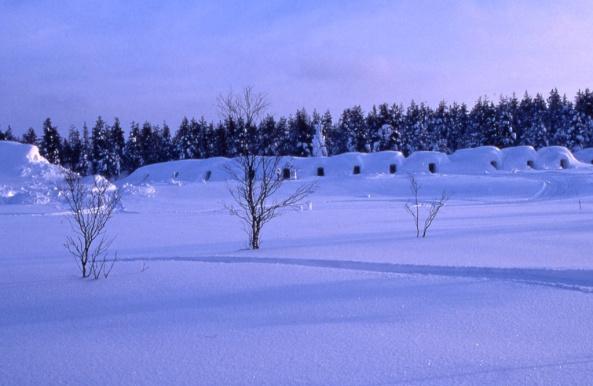 Snow Igloos